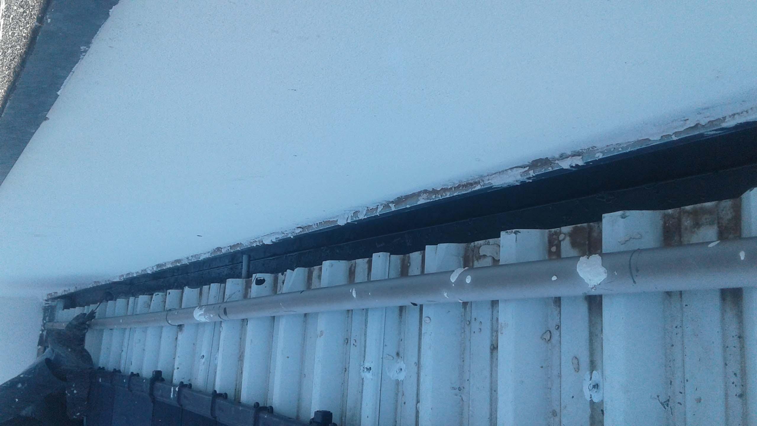 Empresa de limpeza de telhados